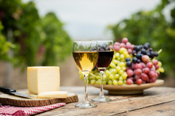 White and red wine in vineyard.