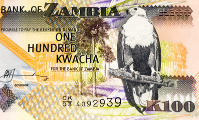 Currancy banknote of Africa