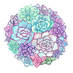 Watercolor succulent composition on white background