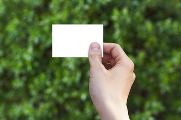 Empty business card in a hand on green background. Mockup.