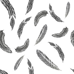 Hand drawn feather illustration. Feather pattern on white background.