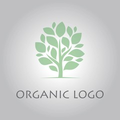 plant tree organic logo