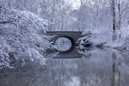 Snow Covered Trees and Stone Bridge