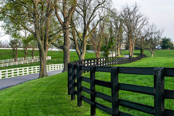 Fence Line and Lane