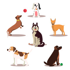Happy dog vector characters on white background. Dogs standing and sitting.