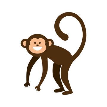 monkey smiling animal cartoon funny wildlife vector illustration
