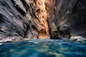 view of the Virgin River Narrows in Zion National Park - Utah Wall mural