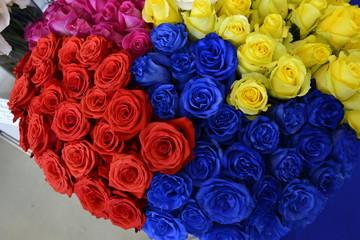Разноцветные розы на Международной выставке цветов в Москве