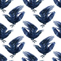 Raven illustration.