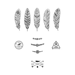 Ethnic black feathers elements with decorative labels. Vector illustration