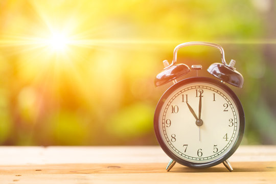 11 o' Clock and Morning sun with Bright and Flare Day Light Blur Green Garden Background with space for text.