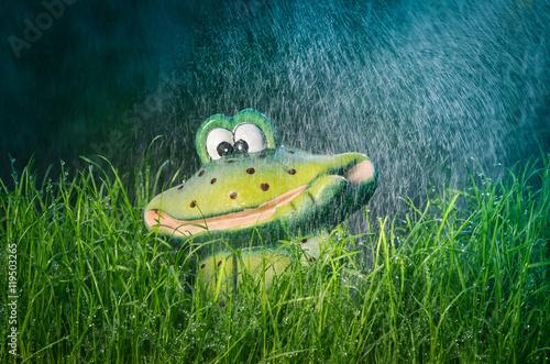 Lustige Deko Figur Frosch Im Garten Im Gras Bei Regen Mit Farbeffekt