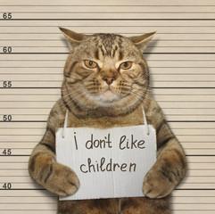 A cat do not like nasty little children. It was arrested.