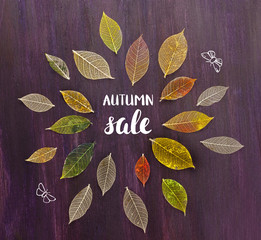 Autumn Sale banner with hand lettering, leaves and butterflies