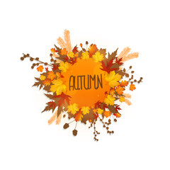 autumn foliage vector background, Can be use sale banner.