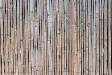 Giant cane fence