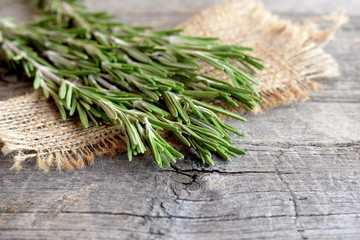 Green sprigs of fresh rosemary on the burlap and old wood background with empty place for text. Fragrant plant used in cooking, medicine, cosmetics