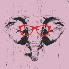 Portrait of Elephant with glasses. Hand-drawn illustration. T-shirt design. Vector