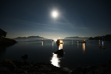 Boats in lake against sky at night