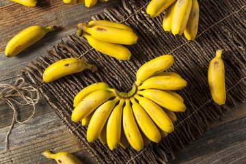 Raw Organic Yellow Baby Bananas