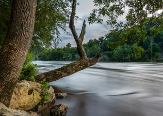 Printed kitchen splashbacks River Old Tree Hangs over French Broad River