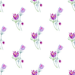 Floral seamless pattern with pasque flowers.Watercolor hand drawn illustration.White background.Snowdrop.