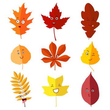 autumn leaves set 6