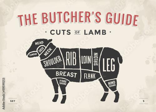 500_F_119599253_0AhOa4jYmHMktGrJz3H0iJKRTw64tKuj cut of beef set poster butcher diagram and scheme lamb\