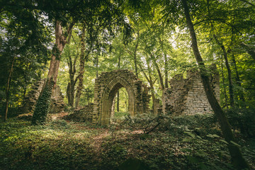 Foto op Textielframe Rudnes Ruins in the forest