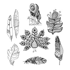 Decorative line art doodle style tribal feathers