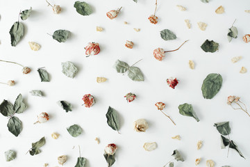 Wallpaper, texture. Dry pink roses and green leaves on white background. Flat lay, top view