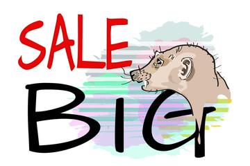 Abstract funny watercolor portrait suricate Meerkat. Text BIG SALE.