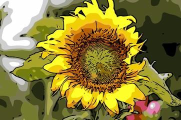 Eine Zeichnung von einer blühenden Sonnenblume.