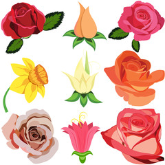 Vector collection of flowers silhouettes isolated on white background