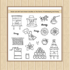 Vector set with hand drawn isolated doodles on the theme of beekeeping and honey