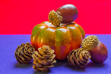 pine cone with acorn and pumpkin on blue and red background