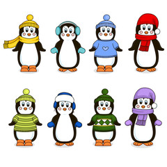 Eight penguins clothing. Isolated object. Vector illustration.