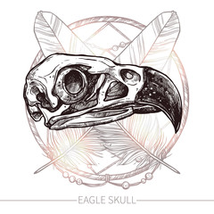 Sketch Eagle Skull. Trendy Hand Drawn Illustration