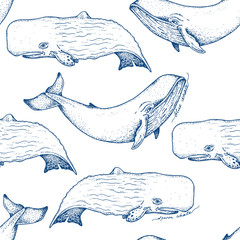Big blue and sperm whales - vector hand drawn seamless pattern design. Huge swimming aquatic mammal ink sketch