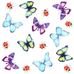Butterflies and ladybug. Hand drawn watercolor seamless pattern white isolated