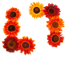 Wreath frame with red sunflowers isolated on white background.