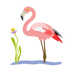Pink Flamingo standing in the water. Flamingo patchwork on a white background