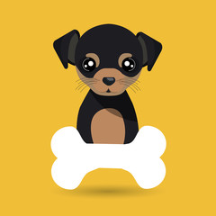 dog pet bone icon vector illustration icon