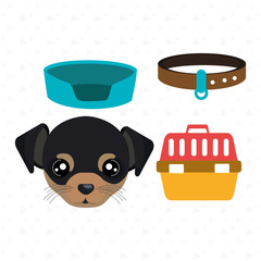 dog plate collar icon vector illustration eps 10