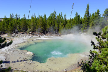 Geothermal activity at Yellowstone National Park,  a huge supervolcano in Wyoming, USA