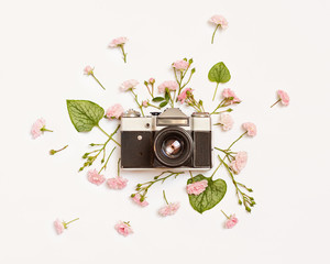 Vintage retro photo camera, pink roses and Brunnera leaves