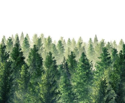 Digital Illustration 3d Rendered forest