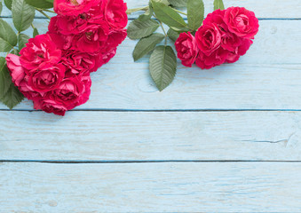 red rose on a blue wooden background