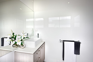Modern bathroom with a white flowering plant with green leaves