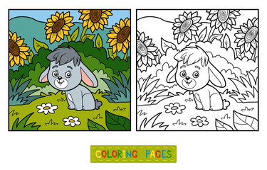 Coloring book, little rabbit and background
